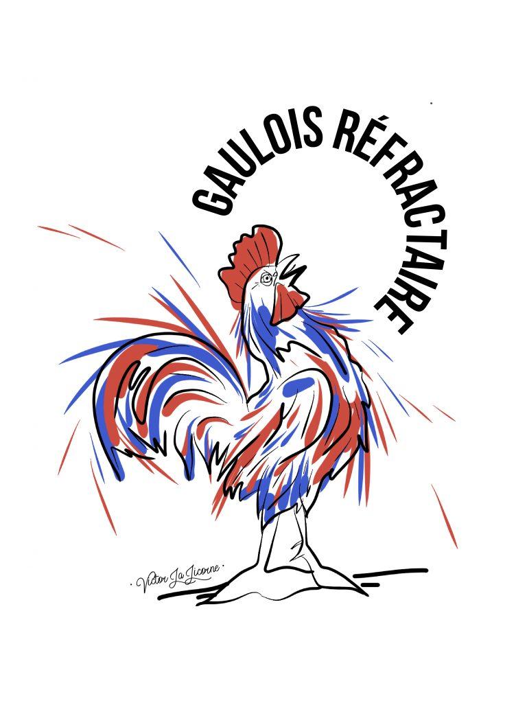 Gaulois-Refractaire-01